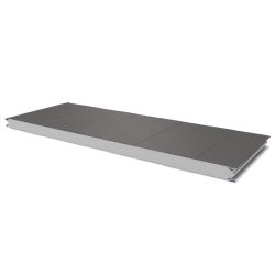 PWS-S - 50 MM, Wall panels, polystyrene RAL 9007