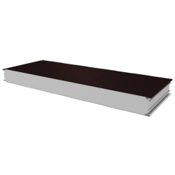PWS-S - 100 MM, Стеновые панели, полистирол RAL 8017
