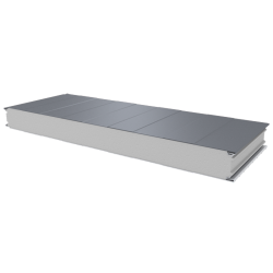 PWS-S - 100 MM, Стеновые панели, полистирол RAL 9006