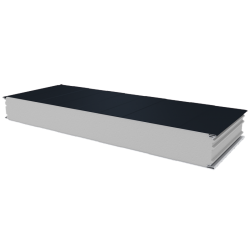 PWS-S - 125 MM, Wall panels, polystyrene RAL 7016