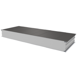 PWS-S - 125 MM, Wall panels, polystyrene RAL 9007