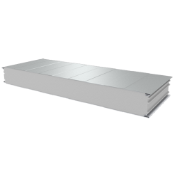 PWS-S - 125 MM, Wall panels, polystyrene RAL 9010