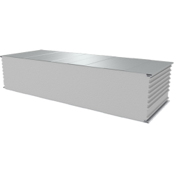 PWS-S - 250 MM, Wall panels, polystyrene RAL 9010