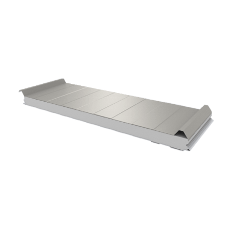 PWD-S - 50 MM, панели крыши, полистирол RAL 9002