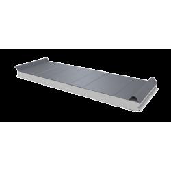 PWD-S - 50 MM, панели крыши, полистирол RAL 9006