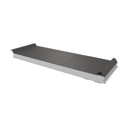 PWD-S - 50 MM, Roofing panels, polystyrene RAL 9007