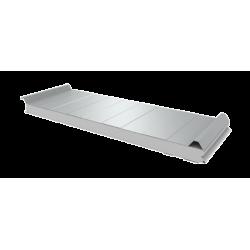 PWD-S - 50 MM, панели крыши, полистирол RAL 9010