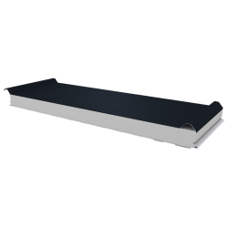 PWD-S - 75 MM, Roofing panels, polystyrene RAL 7016