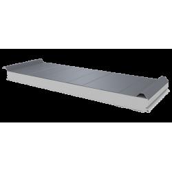 PWD-S - 75 MM, панели крыши, полистирол RAL 9006