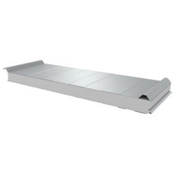 PWD-S - 75 MM, Roofing panels, polystyrene RAL 9010