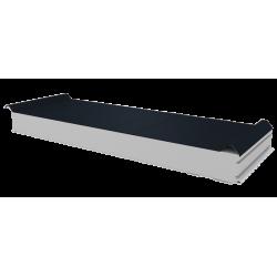PWD-S - 100 MM, панели крыши, полистирол RAL 7016