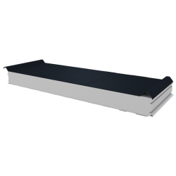 PWD-S - 100 MM, Roofing panels, polystyrene RAL 7016