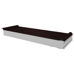 PWD-S - 100 MM, панели крыши, полистирол RAL 8017