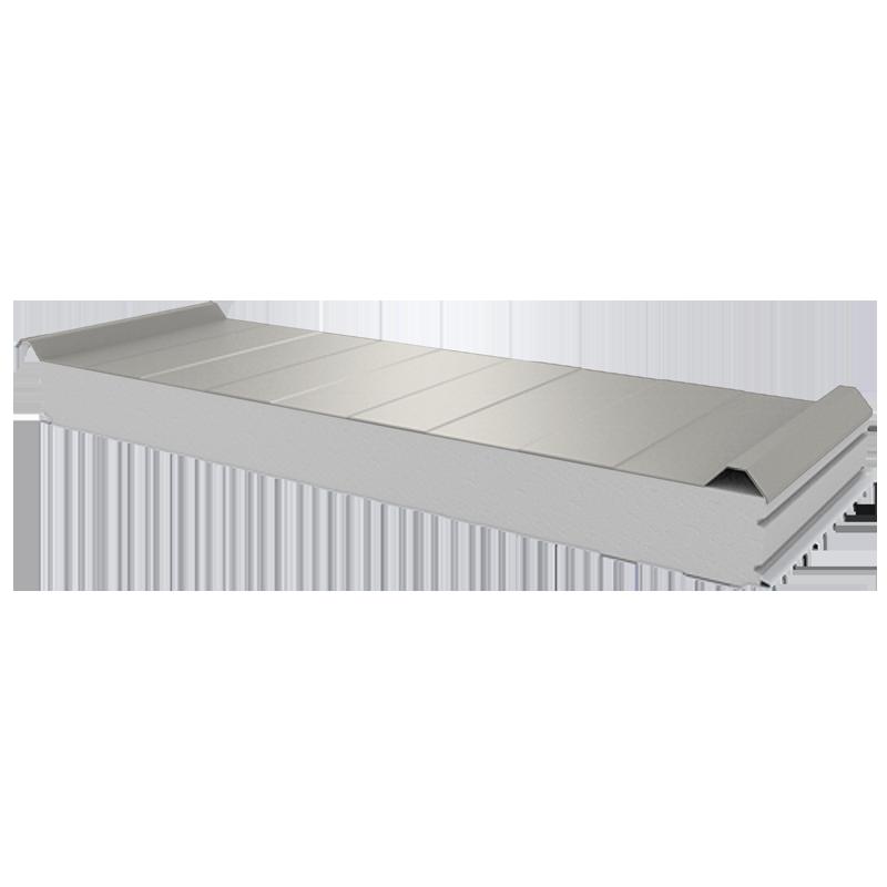 PWD-S - 100 MM, панели крыши, полистирол RAL 9002