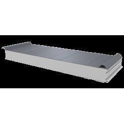 PWD-S - 100 MM, панели крыши, полистирол RAL 9006
