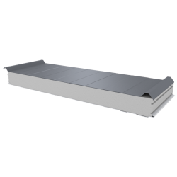 PWD-S - 100 MM, Roofing panels, polystyrene RAL 9006