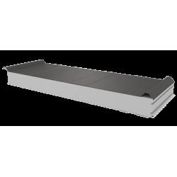 PWD-S - 100 MM, панели крыши, полистирол RAL 9007