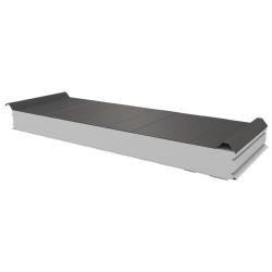 PWD-S - 100 MM, Roofing panels, polystyrene RAL 9007