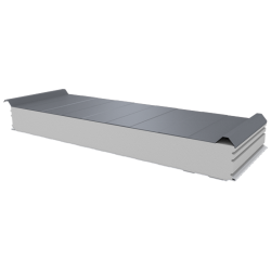 PWD-S - 125 MM, Roofing panels, polystyrene RAL 9006