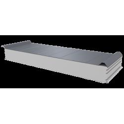 PWD-S - 125 MM, Střešní panely, polystyren RAL 9006