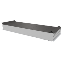 PWD-S - 125 MM, Roofing panels, polystyrene RAL 9007