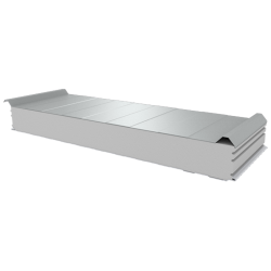 PWD-S - 125 MM, Roofing panels, polystyrene RAL 9010