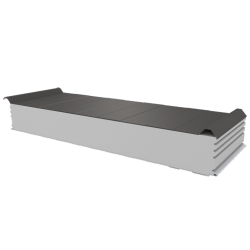 PWD-S - 150 MM, панели крыши, полистирол RAL 9007