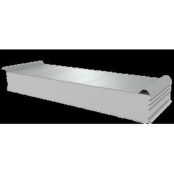 PWD-S - 150 MM, панели крыши, полистирол RAL 9010