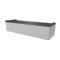 PWD-S - 250 MM, Roofing panels, polystyrene RAL 9007